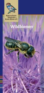 Cover des Flyers Wildbienen